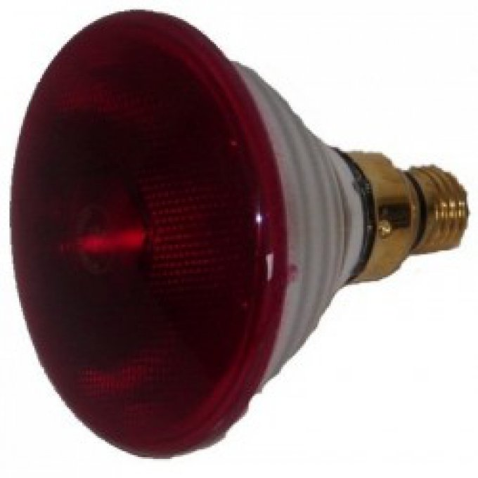Lampe infra rouge 250w